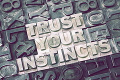 Trust your instincts met Royalty Free Stock Photography