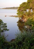 Trustom Pond morning Stock Photo