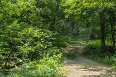 Trustom Pond walking path royalty free stock photography