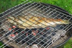 Truta e barbecque imagens de stock