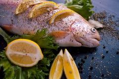 Truta fresca e ingredientes para preparar pratos de peixes na tabela preta Fotografia de Stock