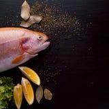 Truta fresca e ingredientes para preparar pratos de peixes na tabela preta Copie o espaço Fotos de Stock