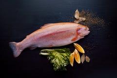 Truta fresca e ingredientes para preparar pratos de peixes na tabela preta, espaço livre para o texto à direita Fotografia de Stock