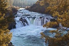 A truta prateada cai cachoeira Sunny Day Winter imagens de stock