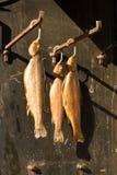 Truta salmon fumada imagem de stock royalty free