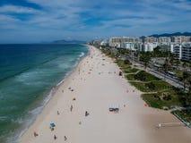 Truteń fotografia Barra da Tijuca plaża, Rio De Janeiro, Brazylia Zdjęcie Stock