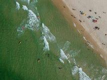 Truteń fotografia Barra da Tijuca plaża, Rio De Janeiro, Brazylia Obraz Royalty Free