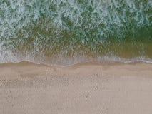 Truteń fotografia Barra da Tijuca plaża, Rio De Janeiro, Brazylia Zdjęcia Royalty Free