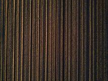 Truteń kukurydzy uprawy kukurydzanego pola pov kultywujący odgórny widok obraz royalty free