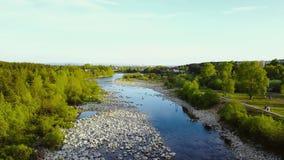 Truteń Lata nad Płytką Skalistą rzeką zbiory wideo