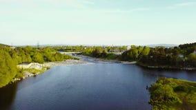 Truteń lata nad rzeką zbiory