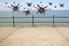 Truteń na wiatrze obrazy royalty free