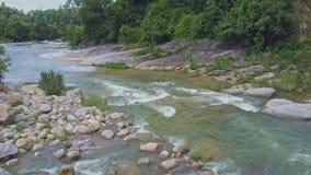 Truteń Pokazuje Skalistego i Leśnego Halnego brzeg rzeki zbiory wideo
