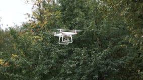 Truteń z kamerą podczas gdy latający w lasowym Bezpilotowym powietrznym copter locie zbiory