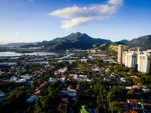 Truteń fotografia Barra da Tijuca, Rio De Janeiro, Brazylia Fotografia Stock