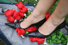 Truth. Female feet dressed in fashion shoes and socks, crushing roses Royalty Free Stock Images