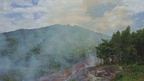Trutni przedstawień bananowi drzewa przeciw ogieniowi dymią wzgórza i niebo zbiory