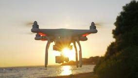 Trutnia latanie blisko morza przy zmierzchem zbiory wideo