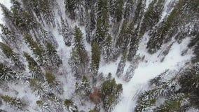 Trutnia materiał filmowy chmurny, mglisty krajobraz, może być widzieć wydźwignięciem przez niskich chmur zdjęcie wideo