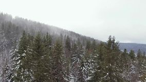 Trutnia materiał filmowy chmurny, mglisty krajobraz, może być widzieć wydźwignięciem przez niskich chmur zbiory
