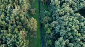 Trutnia powietrzny materiał filmowy od Węgierskiego krajobrazu blisko jeziornego Balaton, zbiory wideo