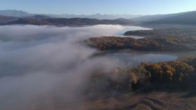 Trutnia strzał mgła właśnie nad jeziorem otaczającym żółtym jesień lasem zbiory wideo