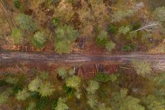 Trutnia widok las, drogi gruntowe i stos, loguje si? wiejskiego krajobraz obraz royalty free