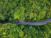 Trutnia widok wyginająca się droga w Transylvania, Rumunia fotografia royalty free