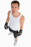 Trwanie bokser kąta wysoki widok Fotografia Stock