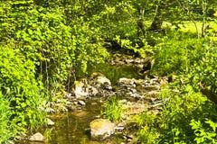 Trwanie mała Bawarska rzeka w wiośnie przy światłem słonecznym obraz stock