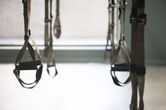Trx fitness straps for working with own weight. Trx equipment hanging for doing push-ups in a gym royalty free stock photography