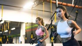 Trx szkolenie Dziewczyny ćwiczy z zawieszenie trenerem w gym obrazy stock