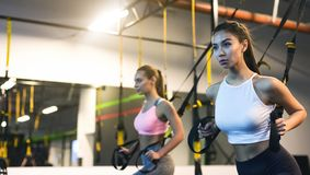 TRX training. Girls exercising with suspension trainer in the gym. Copy space stock images