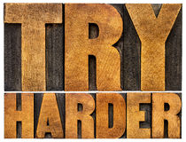 Try harder motivational advice Royalty Free Stock Images