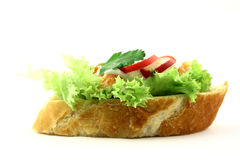 Try me. Side view at tasty fresh salmon's sandwich Royalty Free Stock Photo