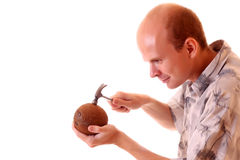 try to open coconut Stock Photography