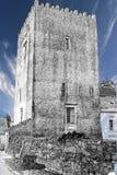 Trybogney kasztel Co waterford Irlandia Zdjęcia Stock