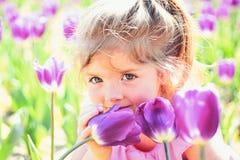 9 trybowi stubarwni obrazki ustawiających wiosna tulipanów cudownych Twarz i skincare alergia kwiaty Wiosna tulipany prognoza pog zdjęcie stock