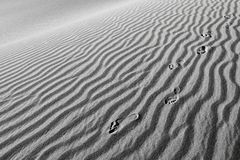 Tryck för människafot i sanden royaltyfria bilder