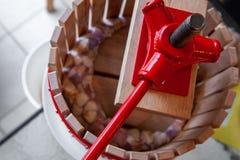 Trycka på äppelmust med en liten äpplepress, innan framställning av äppeljuice med den royaltyfri bild