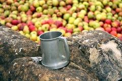 trycka på för äpple Fotografering för Bildbyråer