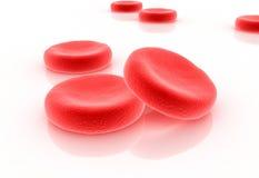 Tryckning av blodceller Fotografering för Bildbyråer