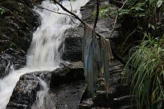Tryckning av vatten royaltyfri bild