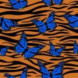 Trycktigerhudar som kombineras med monarkfjärilar seamless vektor f?r modell stock illustrationer