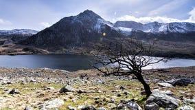 Tryfan Ogwen谷斯诺多尼亚北部威尔士 免版税库存图片