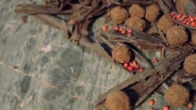 Tryfflar i mörk choklad med chiper för röd peppar och choklad arkivfilmer