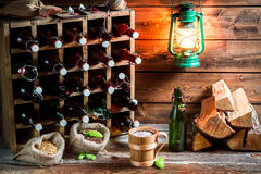 Trying fresh homemade beer in the cellar Royalty Free Stock Photo