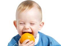 Trying to bite orange Royalty Free Stock Image