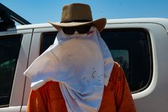 Trying to cope with flies and heat in the Australian outback. A surveyor works in the Australian outback trying to cope with the flies and heat royalty free stock photography