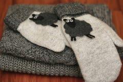 Trykotowi szczegóły ciepły odzieżowy pulower zdjęcie royalty free